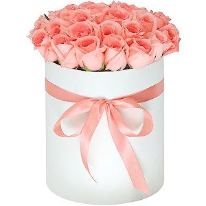 Заказ цветов в саранске с доставкой купить горшечные цветы дешево в москве